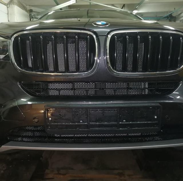 Защитная решетка радиатора BMW X6