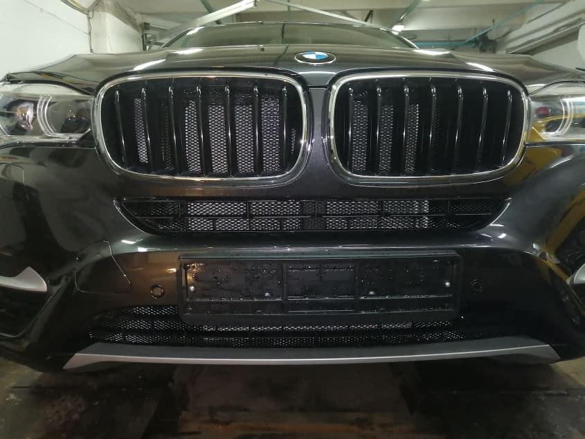Защитная решетка BMW X6